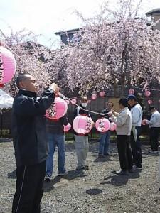 0405廻田桜まつり準備